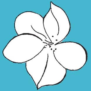 1288185_rrPainted_Floral_Motif